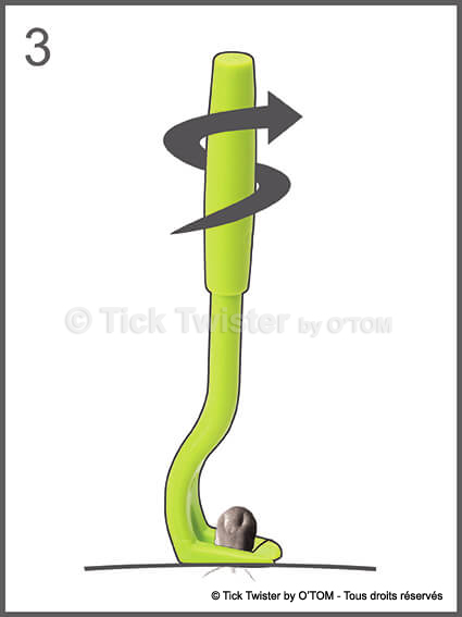 Tick Twister by O'TOM - Instructions tick removal by twisting